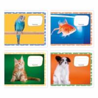 Schriften - Huisdieren | Heutink | 2/3 - midiSchriften | Liniatuur 7,5 - 5 - 7,5 mm | 25 stuks