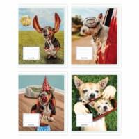 Schriften - Gekke honden   Heutink   Liniatuur 6-3-6 mm   25 stuks