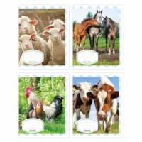 Schriften - Boerderijdieren | Heutink | Liniatuur 6-4-6 mm | 25 stuks