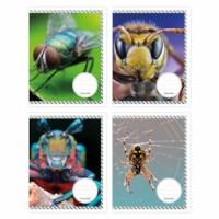 Schriften - Insecten | Heutink | Liniatuur 24 lijnen | 25 stuks
