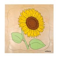 Groeipuzzel Zonnebloem | Educo