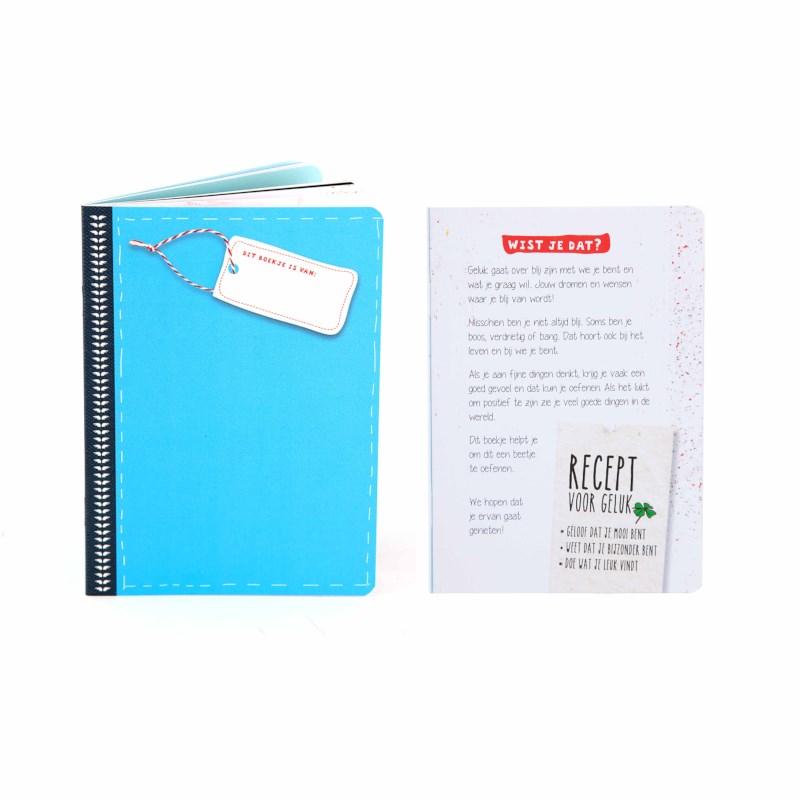 Veerkrachtboekje blauw | 7-10 jaar | Gelukskoffer
