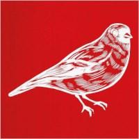 Sjabloon   Vogel   vel 20 x 22 cm