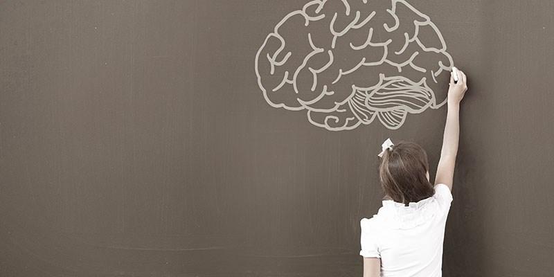 Hoe ontwikkelt het kinderbrein zich?